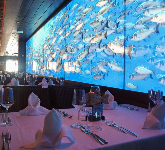 AIDAnova Restaurants Oceans