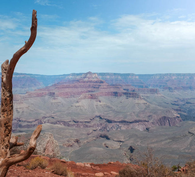 Grand Canyon Cedar Ridge