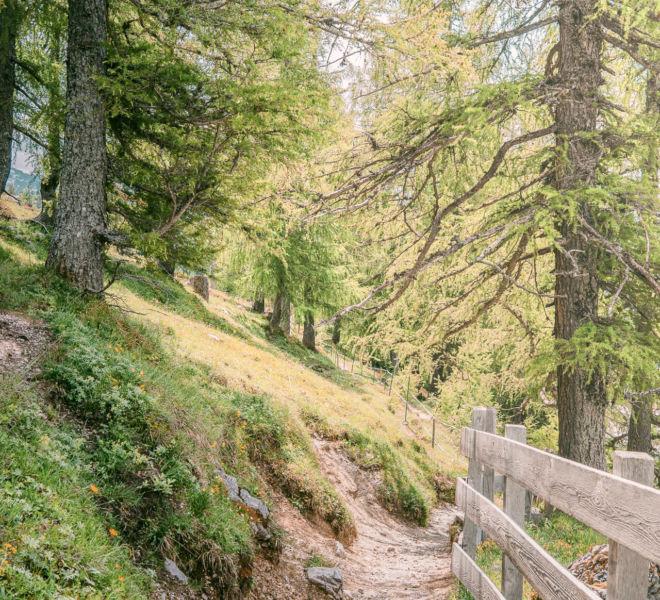 Österreich Wanderweg