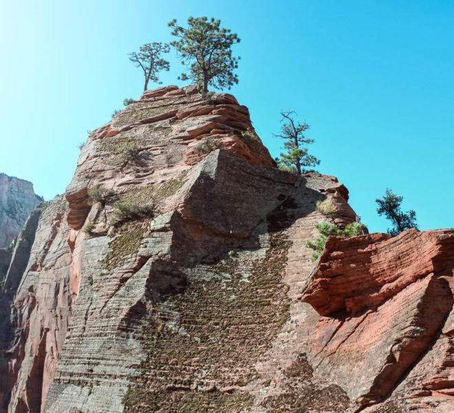 Zion National Park Angels Landing Wanderweg
